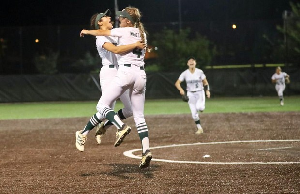 Softball season preview  2019 NJSIAA playoff classifications   analysis 99f9a7b16