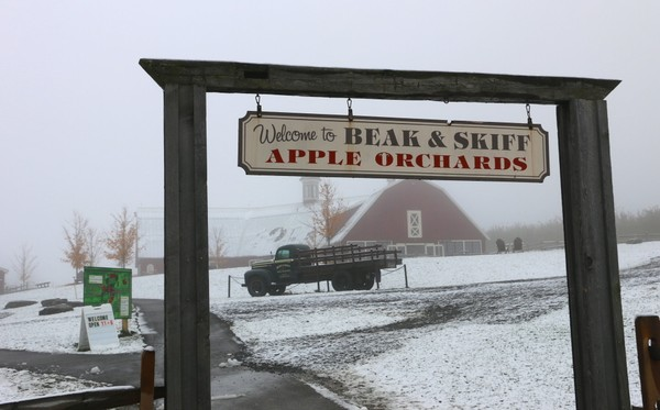 Beak & Skiff's Apple Hill Campus, 2708 Lords Hill Road (Route 80) in LaFayette. The Apple Hill visitors center will remain open from Thanksgiving to Dec. 21 this year. (Katrina Tulloch)