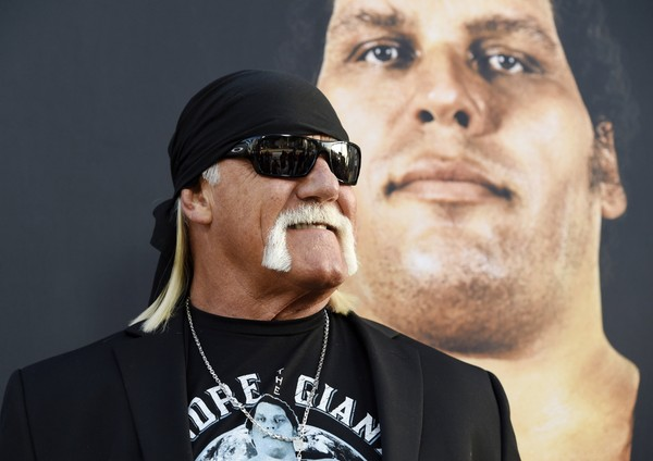 Hulk Hogan Films