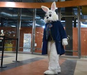 Easter bunny to return to Destiny USA this week