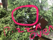 When tree hits Peppino's pizza oven just before Taste of Syracuse, Facebook responds