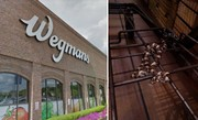 Snake slithers into shopping cart at Wegmans in Upstate NY