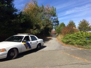 Police responding to domestic dispute find woman dead