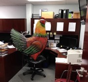 A 4-foot chicken statue's weird trip from abduction to an auto body shop
