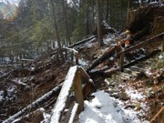'Widow-makers' and worse: Storm damage closes Delaware Water Gap trails