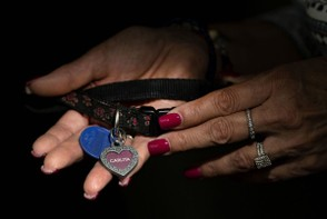 Diane Stopiro holds the collar that belonged to her dog, Carlita, who died in February 2018, while being photographed at her home in Pittsburgh on Thursday, Aug. 2, 2018. Barry Reeger   For NJ Advance Media PETSMART For NJ Advance Media