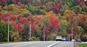 Along route 28 N, south of Old Forge. Early fall foliage colors in the Central Adirondacks, October 1, 2016. Michael Greenlar | mgreenlar@syracuse.com