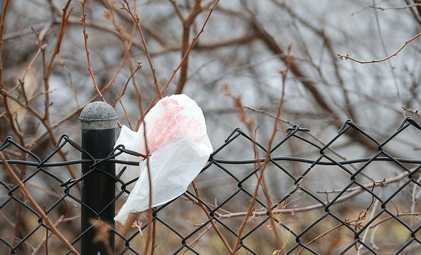 A plastic shopping bag gets caught on a fence on Butternut Street in Syracuse in a file photo.