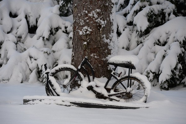 A snow covered bike on Paddock Street in early December after the Watertown area was hit with by a blast of winter weather.
