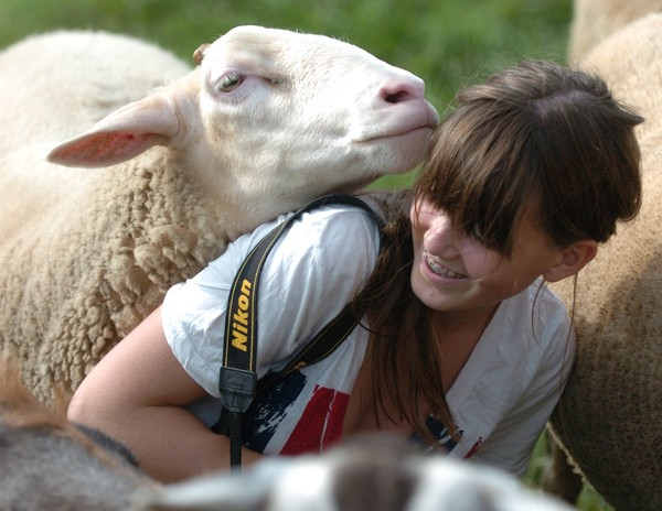 One of Farm Sanctuary's many goats gives a playful nudge to 15 year old Olivia Phillips of Darien Connecticut.