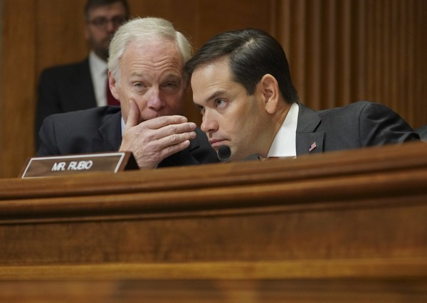 Senate Foreign Relations Committee members Sen. Ron Johnson, R-Wis., left, confers with Sen. Marco Rubio, R-Fla., right, during a hearing on North Korea on Capitol Hill in Washington on Tuesday, Nov. 14, 2017.