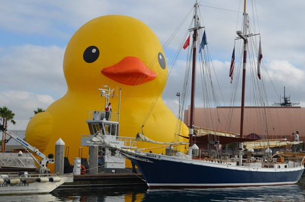 World S Largest Rubber Duck Coming To Syracuse For