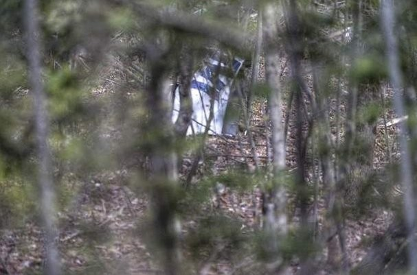 canadian pilot found dead after plane crashes in upstate new york woods