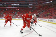 Detroit Red Wings 4, Florida Panthers 3 (OT)