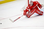 Detroit Red Wings 3, Anaheim Ducks 1